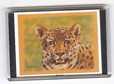 JAGUAR LARGE FRIDGE MAGNET